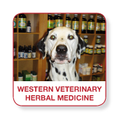 Western Veterinary herbal medicine